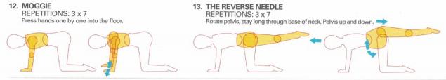 Oscillation Moggie Reverse Needle