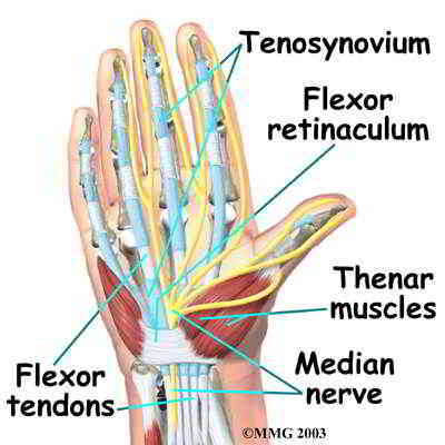 hand carpal tunnel